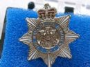 Devonshire Regiment Military Enamel Lapel Badge